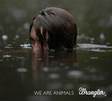 we-are-animals-wrangler